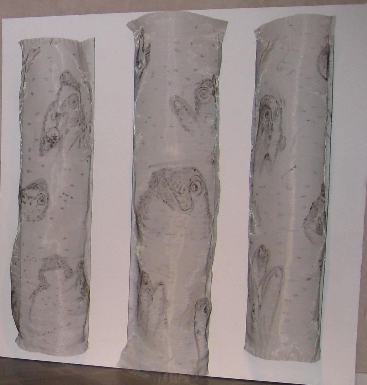 4-Basoaren Irudiak-Imagenes en el Bosque